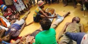 Pelangana Ham Di Papua Barat